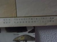 Rimg9560b